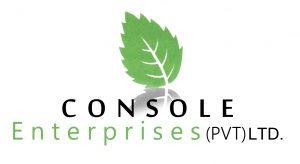 cloud-erp-client-console
