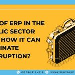 erp in public sector can eliminate corruption