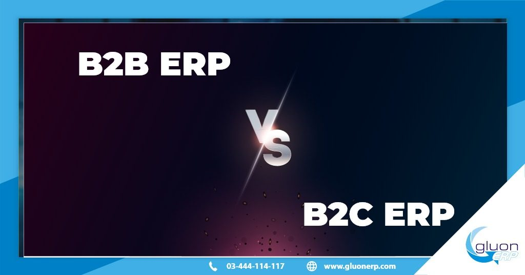 b2b erp VS b2c erp